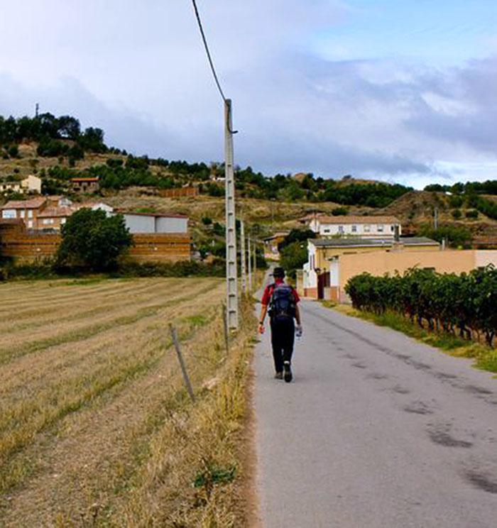 Camino Santiago Navarrete